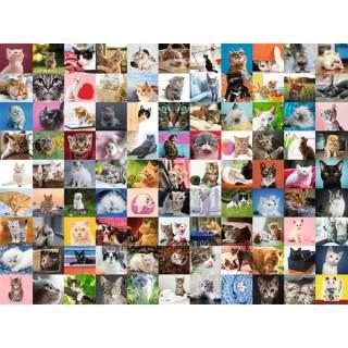 Ravensburger puzzle 99 mačaka RA16235