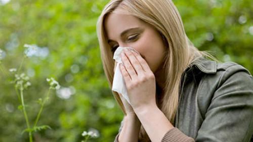 Polinol je moj izbor u borbi sa alergijom
