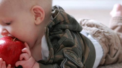 Kada je vaša beba spremna za voće?