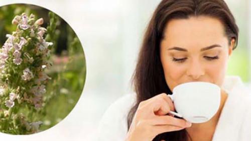 Macina trava: Da li ovaj narodni čaj leči neplodnost?