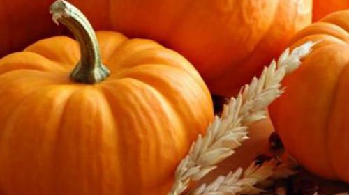 Namirnica koju vaši klinci moraju da probaju ove jeseni-bundeva