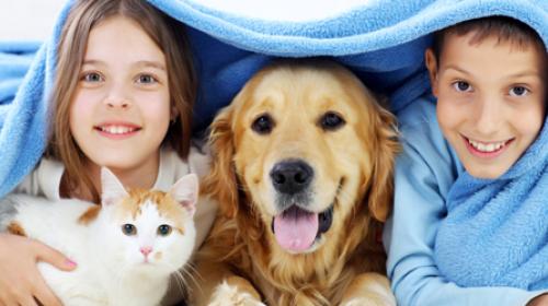 Kada je vaše dete spremno za kućnog ljubimca?