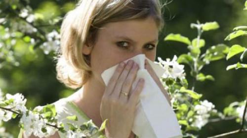 """Kako mi je """"Immuno GD-poly"""" pomogao da se rešim alergije"""