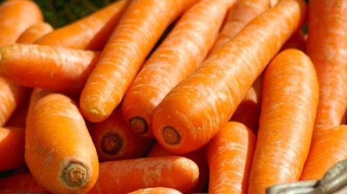 Šargarepa jača imunitet