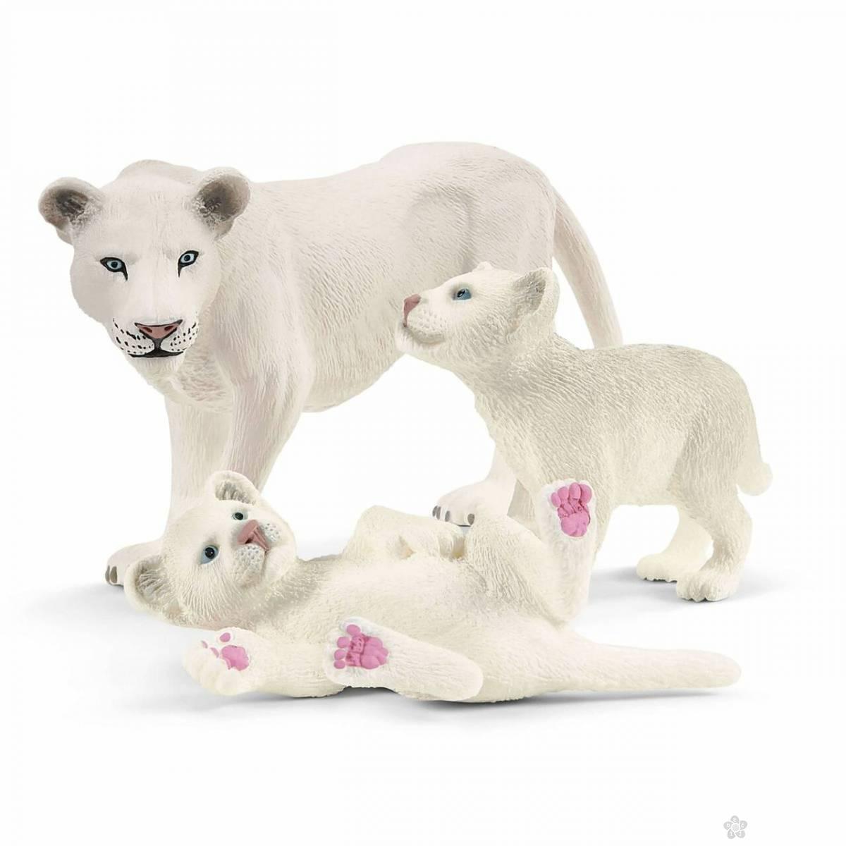 Porodica belih lavova 42505