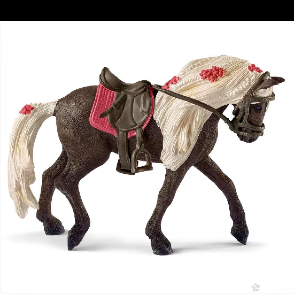 Rocky planinska kobila 42469