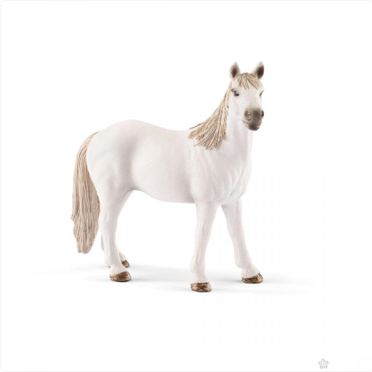 Štale za konje 72116