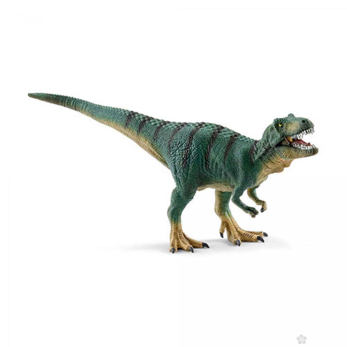 Thyranosaurus rex juvenile